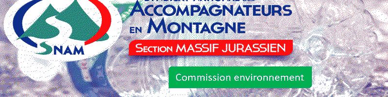 Commission environnement